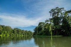 Flussfahrt im Dschungel Stockfoto