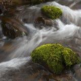 Flussfelsen Stockfoto