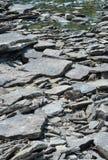 Flussfelsen auf der Seite des Ottawa-Flusses Stockfotos