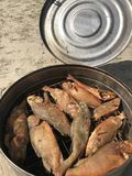 Flussfische gekocht an der Stange Heiße geräucherte Stange liegt in einem offenen rauchenden Gerät Stockfotografie