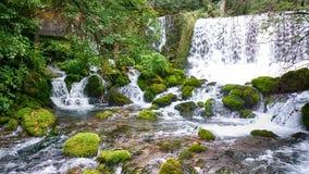 Flussfrühling Stockfoto