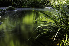 Flusshintergrundnatur Lizenzfreies Stockbild