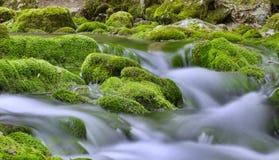 Flussi della Crimea Fotografia Stock