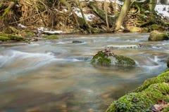Flussi di corrente nella foresta di inverno fotografia stock
