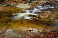 Flusskaskade im Berg forrest Lizenzfreie Stockfotos