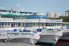 Flusskreuzschiff Lizenzfreie Stockbilder