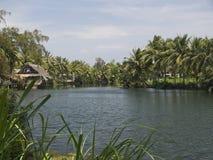 Flusslandschaft Stock Image