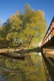 Flusslandschaft Lizenzfreies Stockbild