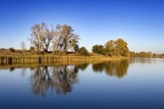 Flusslandschaft Stockbild