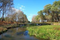 Flusslandschaft Lizenzfreies Stockfoto