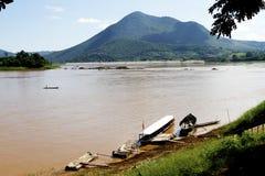 Flussleben lizenzfreies stockfoto
