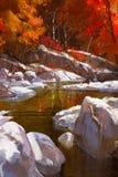 Flusslinien mit Steinen im Herbstwald Lizenzfreie Stockfotografie