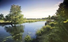 Flussnocken stockbilder