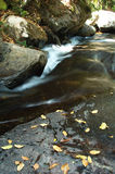 Flusso. Fotografia Stock Libera da Diritti