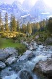 Flusso alpino della sorgente Fotografia Stock Libera da Diritti