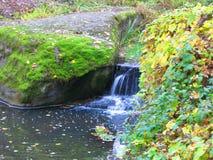 Flusso continuo dell'acqua nel parco in autunno Fotografia Stock