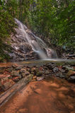 Flusso continuo della cascata Fotografia Stock