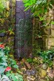 Flusso continuo della cascata in un giardino tropicale, bella architettura del cortile, fondo della natura immagine stock