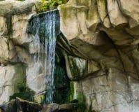 Flusso continuo della cascata in un paesaggio della montagna, fondo della natura fotografia stock