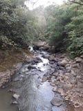 Flusso del fiume Fotografie Stock Libere da Diritti