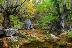 Flusso del fiume in alta montagna in autunno Fotografia Stock