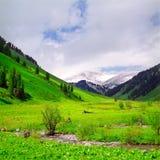 Flusso del fiume in alte montagne Immagini Stock