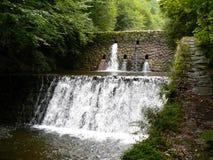 Flusso del fiume della montagna. Cascata. Fotografia Stock Libera da Diritti