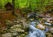 Flusso del fiume della montagna fra la pietra Alpi di Julian, Slovenia Fotografia Stock Libera da Diritti