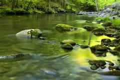 Flusso del fiume in TN, montagne fumose Fotografia Stock