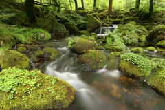 Flusso del Moorland Fotografie Stock