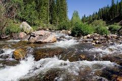 Flusso del Wyoming Immagine Stock Libera da Diritti