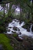 Flusso del Yosemite Fotografie Stock