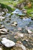 Flusso dell'acqua in natura Immagini Stock