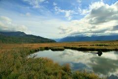 Flusso dell'Alaska Fotografie Stock