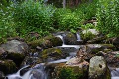 Flusso dell'alta montagna Immagine Stock Libera da Diritti