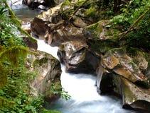 Flusso della montagna Fotografia Stock Libera da Diritti