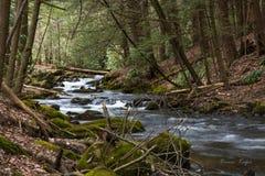 Flusso della montagna Immagine Stock Libera da Diritti