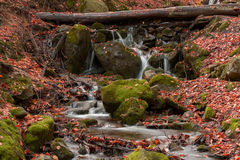 Flusso della montagna Fotografie Stock