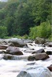 Flusso della montagna Immagini Stock