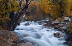 Flusso della montagna alla caduta Fotografia Stock Libera da Diritti