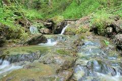 Flusso della montagna con la piccola cascata Fotografie Stock