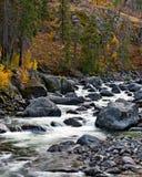 Flusso della montagna con le rocce Fotografia Stock