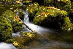 Flusso della montagna dell'acqua corrente Fotografie Stock