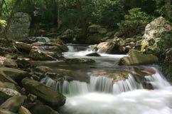 Flusso della montagna di primavera Immagine Stock