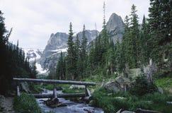 Flusso della montagna in montagne rocciose del Colorado Immagini Stock Libere da Diritti
