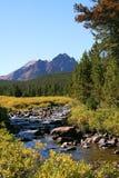 Flusso della montagna nelle montagne di Uinta nell'Utah Immagine Stock