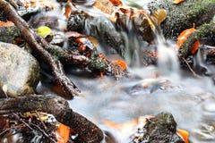 Flusso della valle Immagine Stock Libera da Diritti