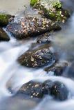Flusso di autunno Immagini Stock