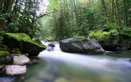Flusso di autunno Fotografie Stock