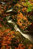 Flusso di autunno in montagne giganti Fotografia Stock Libera da Diritti